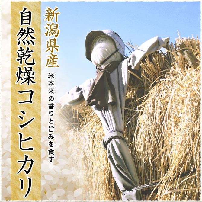 米本来の香りと旨みを食す 自然乾燥コシヒカリ